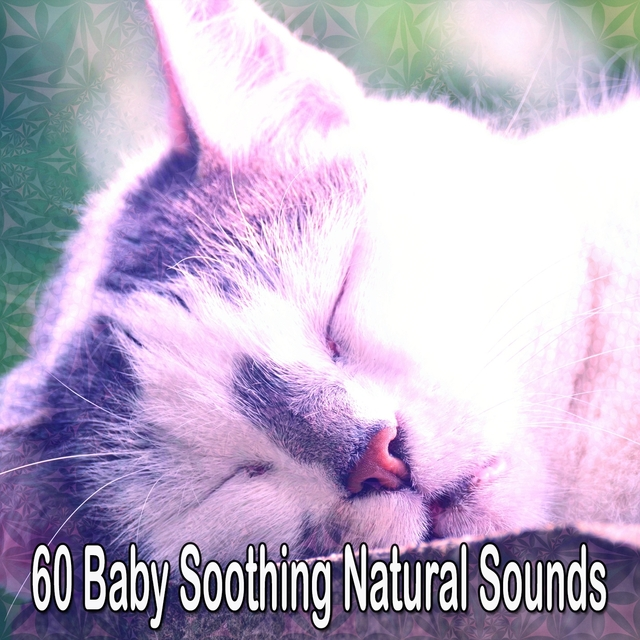 60 Baby Soothing Natural Sounds