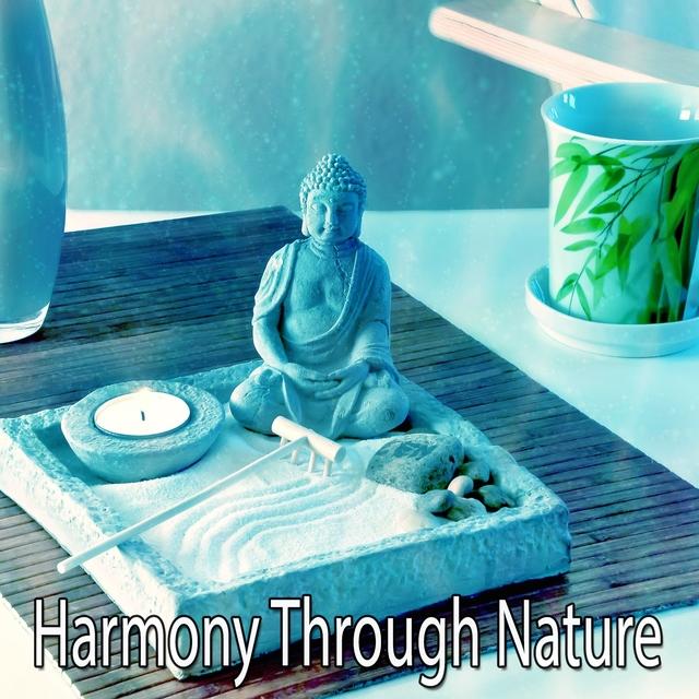 Harmony Through Nature
