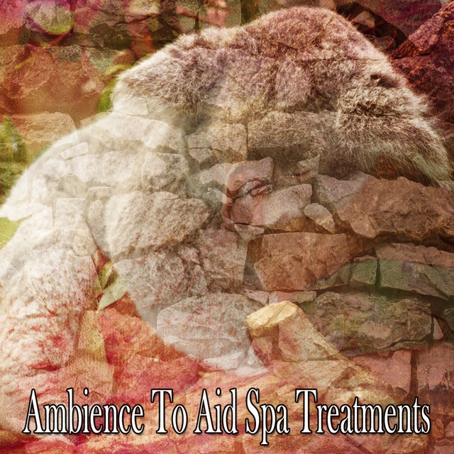 Ambience To Aid Spa Treatments