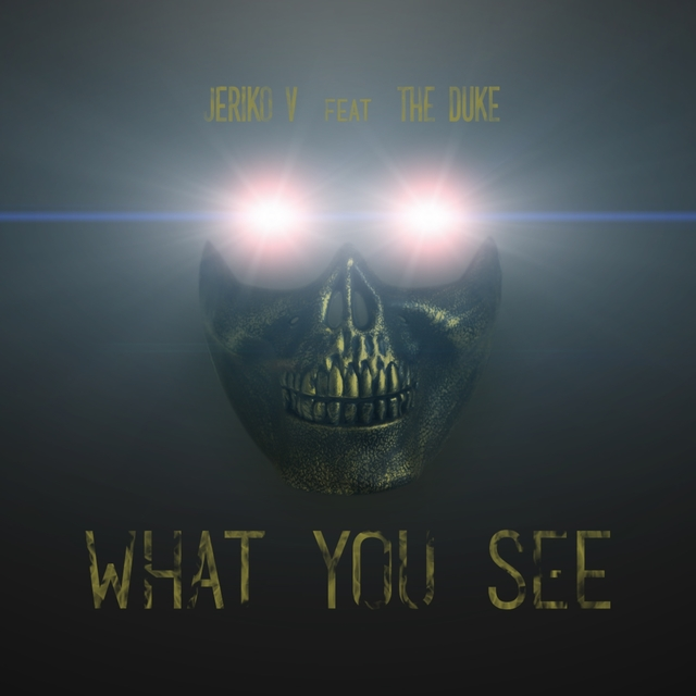 Couverture de What You See