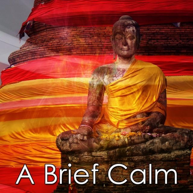 A Brief Calm