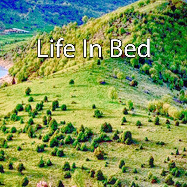 Life In Bed