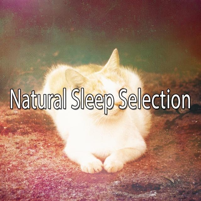 Natural Sleep Selection
