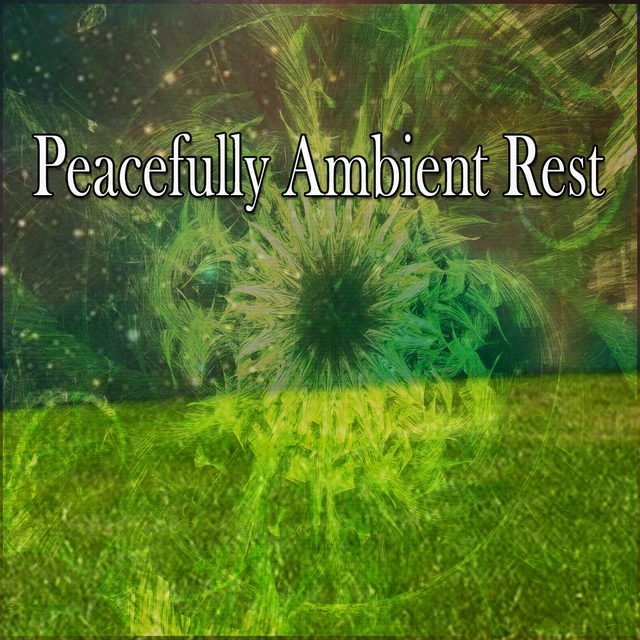 Peacefully Ambient Rest