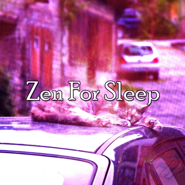 Zen For Sleep