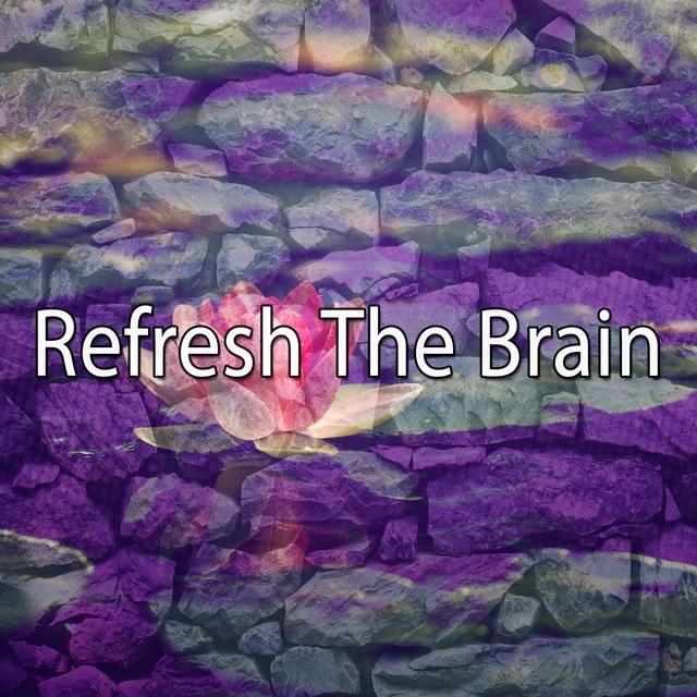 Refresh The Brain