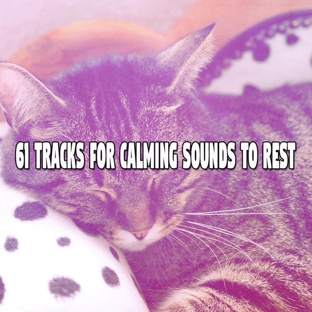 61 Tracks For Calming Sounds To Rest