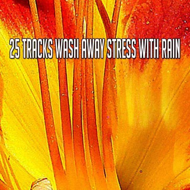 25 Tracks Wash Away Stress With Rain