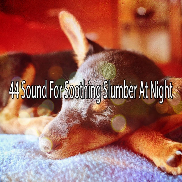 44 Sound For Soothing Slumber At Night