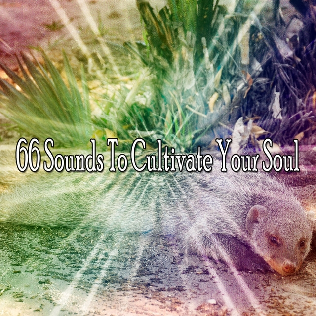 66 Sounds To Cultivate Your Soul