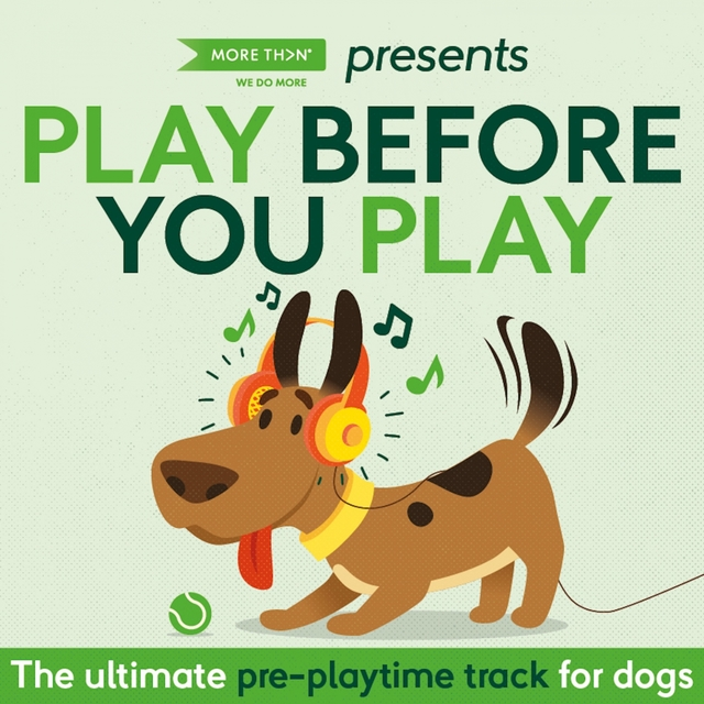 Play Before You Play