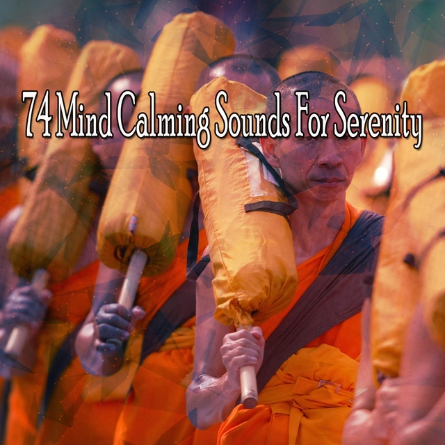 74 Mind Calming Sounds For Serenity