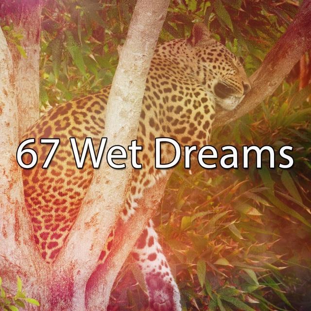 67 Wet Dreams