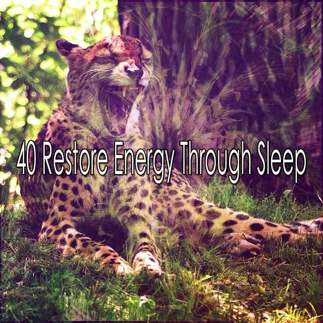40 Restore Energy Through Sleep