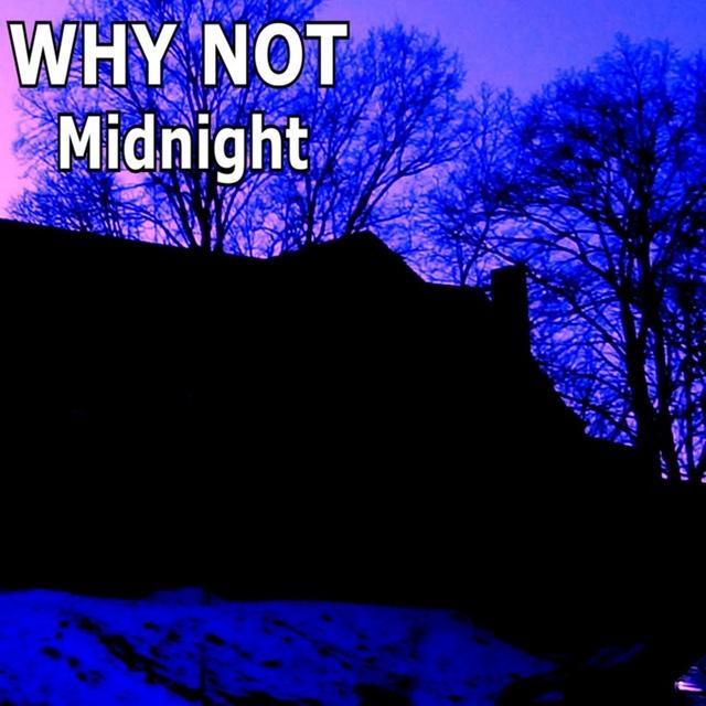 Couverture de Midnight