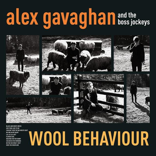 Wool Behaviour