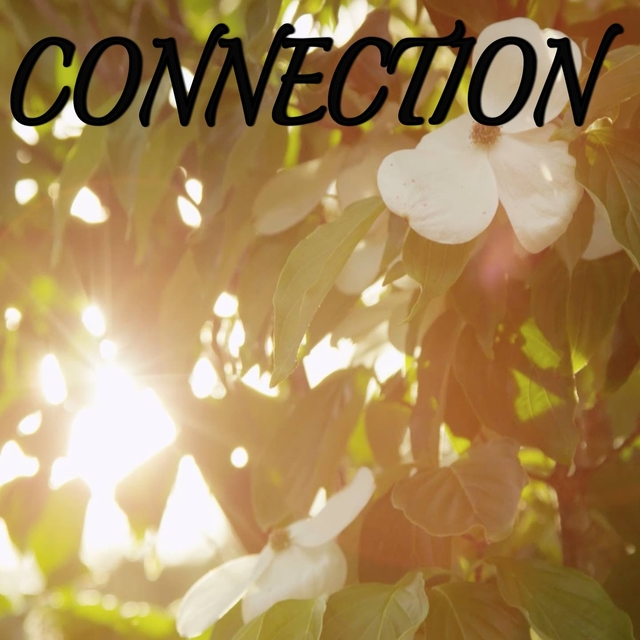 Connection / Tribute to OneRepublic