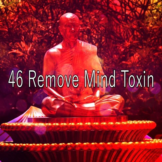 46 Remove Mind Toxin