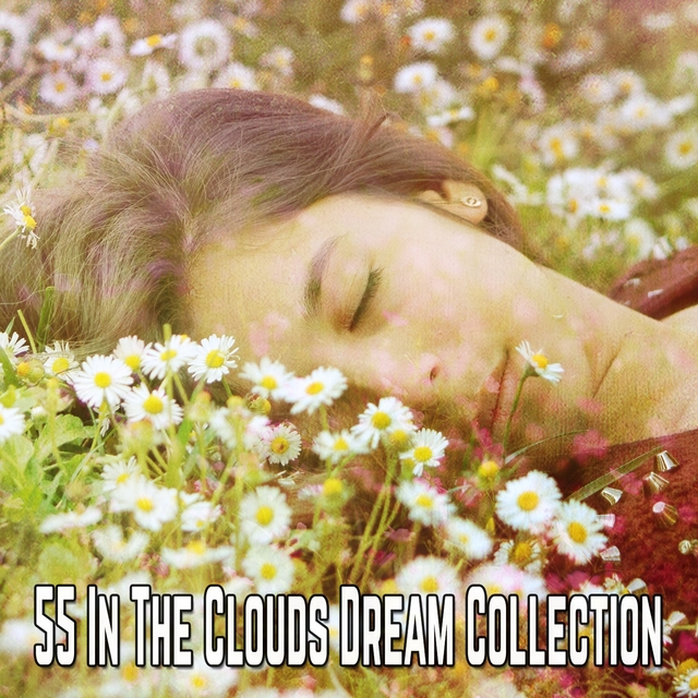 55 In The Clouds Dream Collection