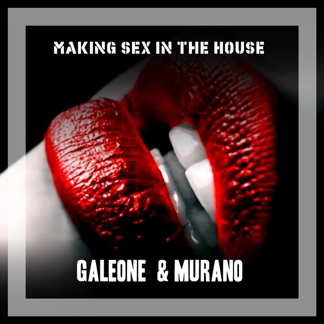 Making Sex In The House