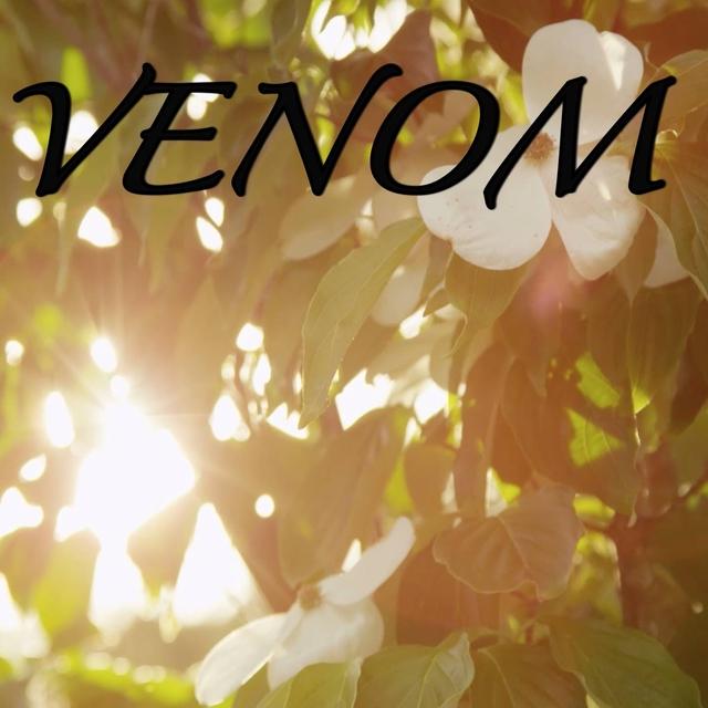Venom / Tribute to Eminem