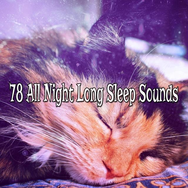 78 All Night Long Sleep Sounds