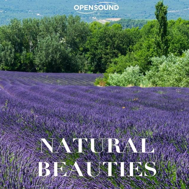 Couverture de Natural Beauties