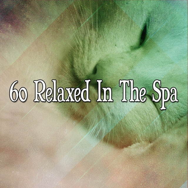 60 Relaxed In The Spa