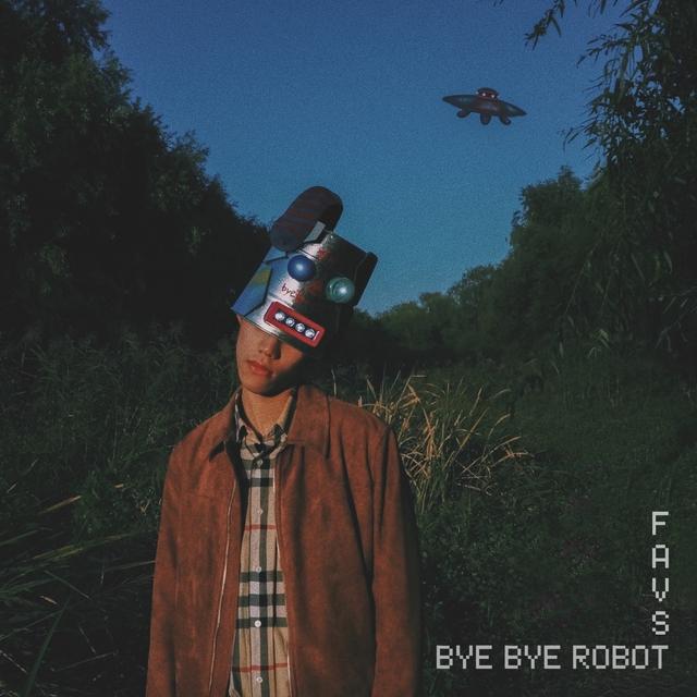 Bye Bye Robot