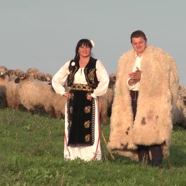 Couverture de Sus La Munte La Sibiu
