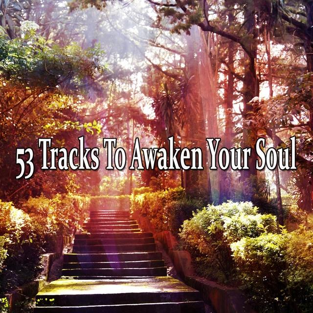 53 Tracks To Awaken Your Soul