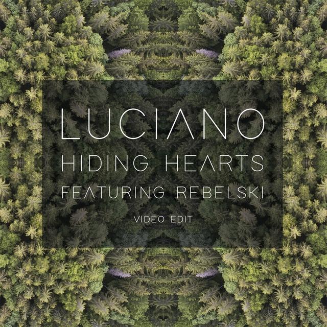 Couverture de Hiding Hearts