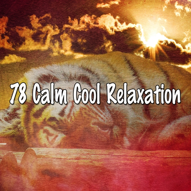 78 Calm Cool Relaxation