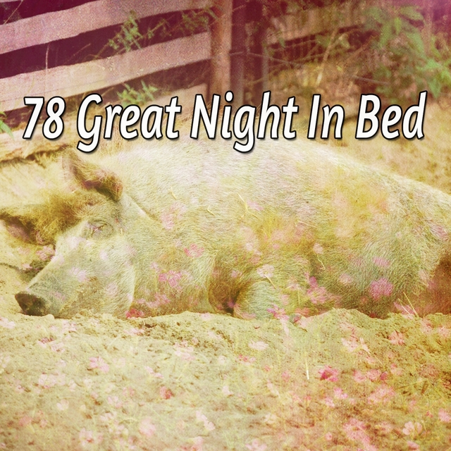 78 Great Night In Bed