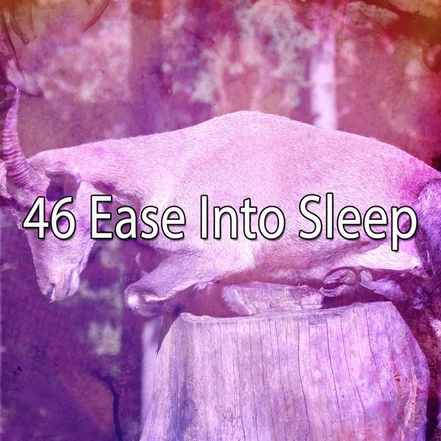 46 Ease Into Sleep