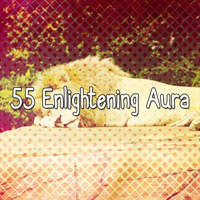 55 Enlightening Aura