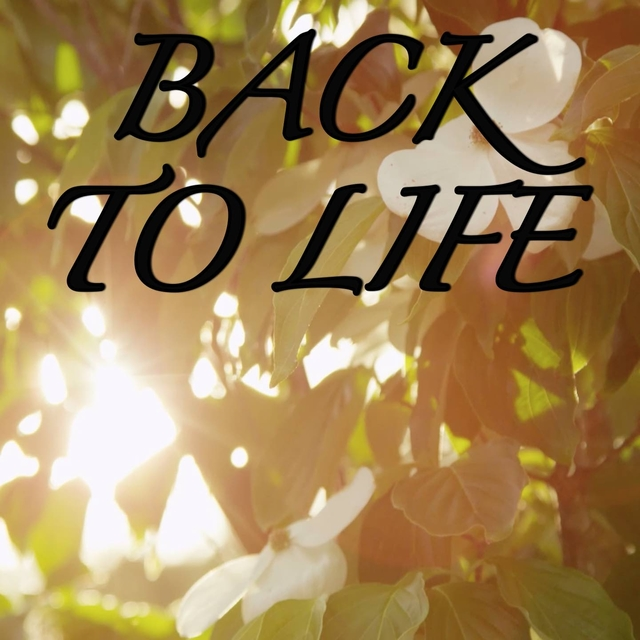Back To Life - Tribute to Hailee Steinfeld