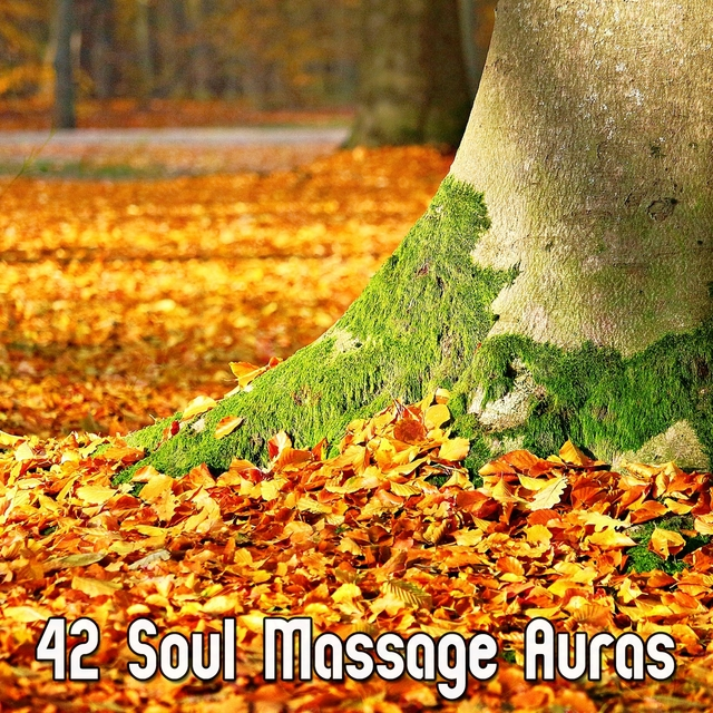 Couverture de 42 Soul Massage Auras