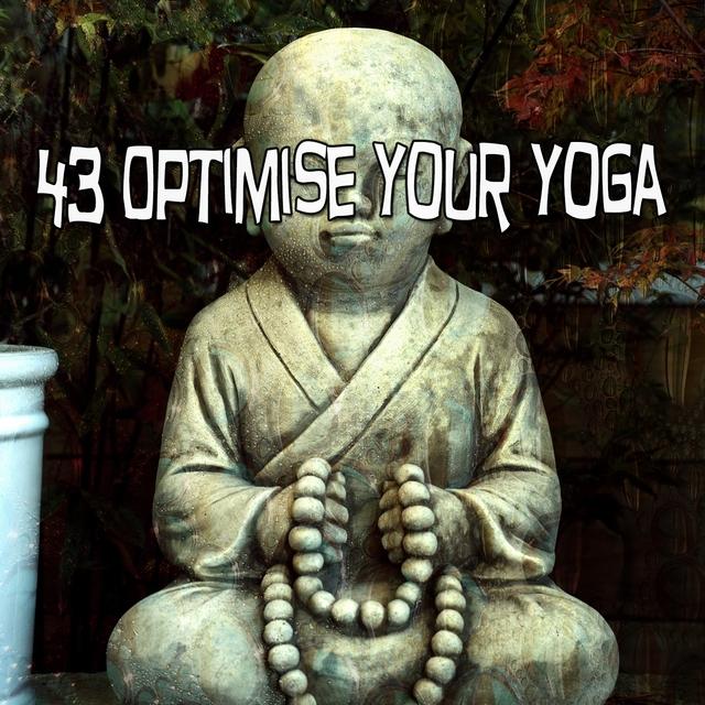 Couverture de 43 Optimise Your Yoga