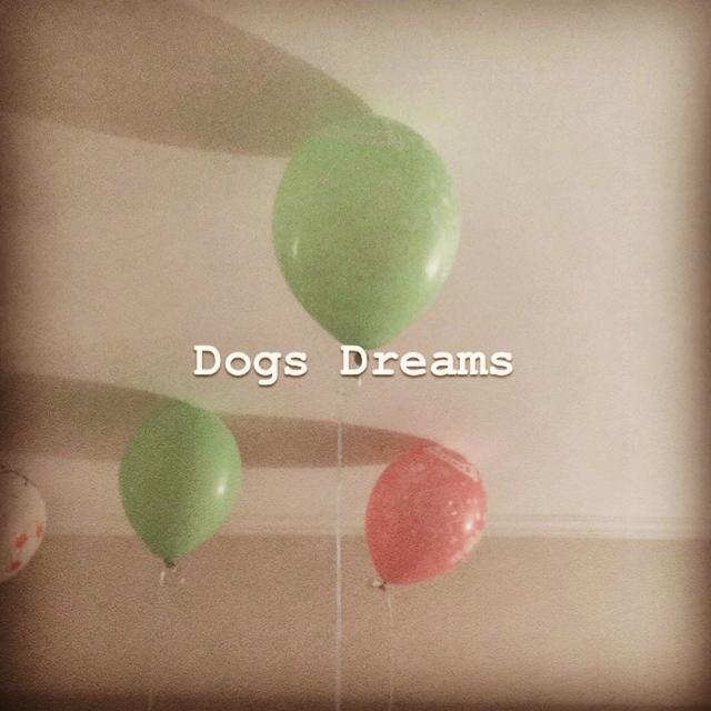 Dogs Dreams