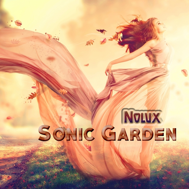 Couverture de Sonic Garden