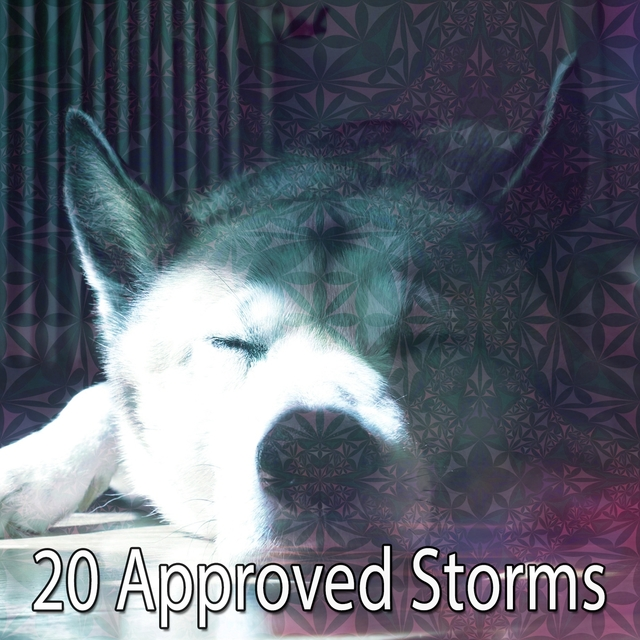 20 Approved Storms