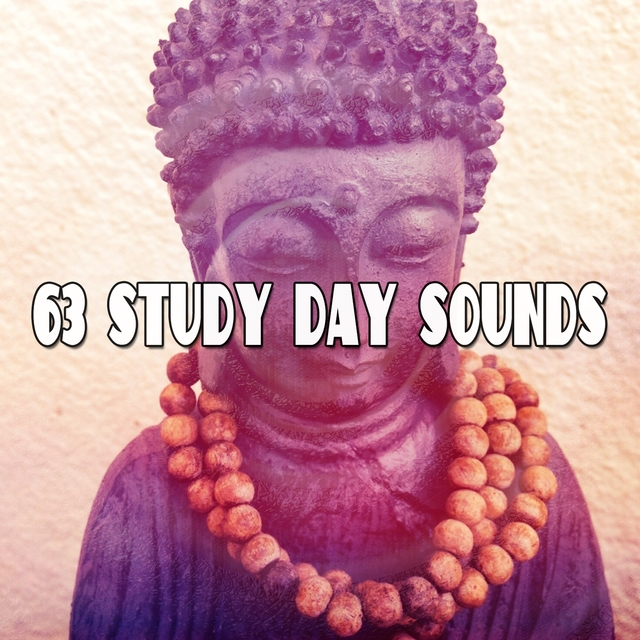 63 Study Day Sounds