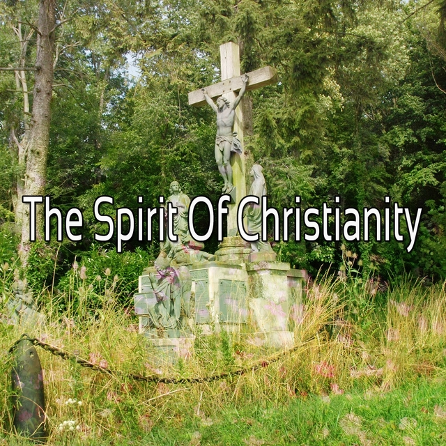 The Spirit Of Christianity