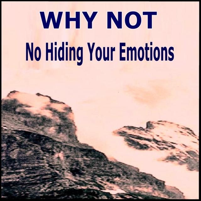 Couverture de No Hiding Your Emotion