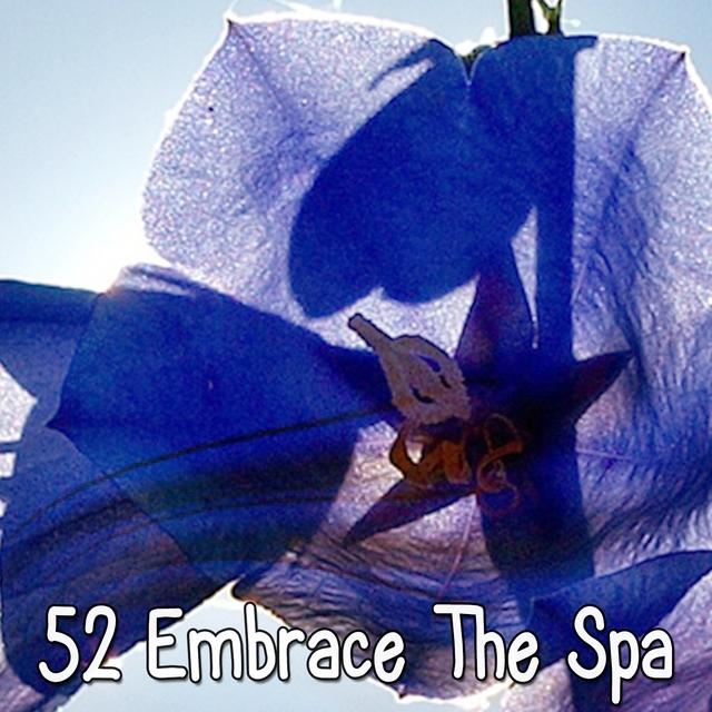 52 Embrace The Spa