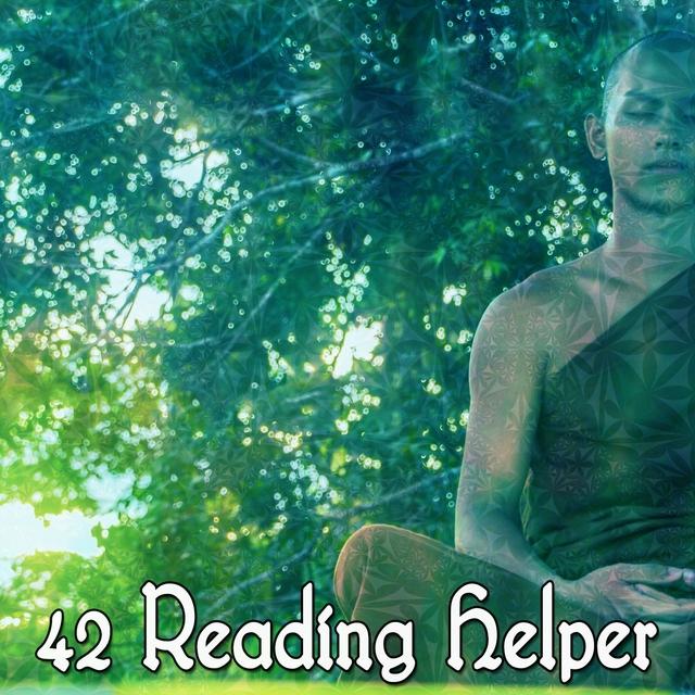 42 Reading Helper