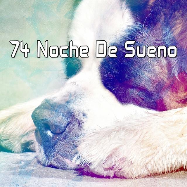 74 Noche De Sueno