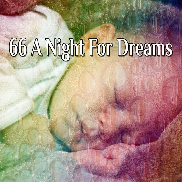 66 A Night For Dreams