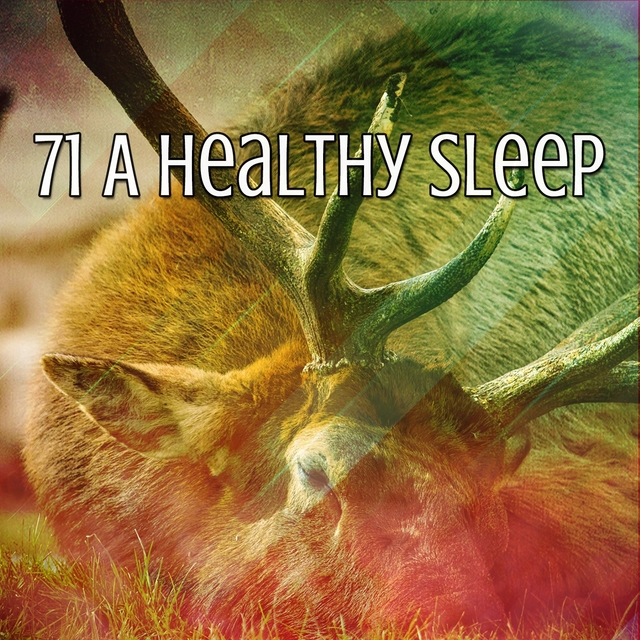 71 A Healthy Sleep